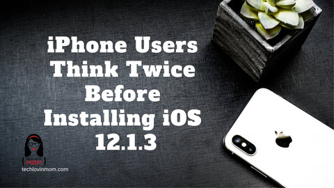 iPhone Users Think Twice Before Installing iOS 12.1.3